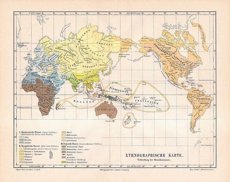 Caucasian race