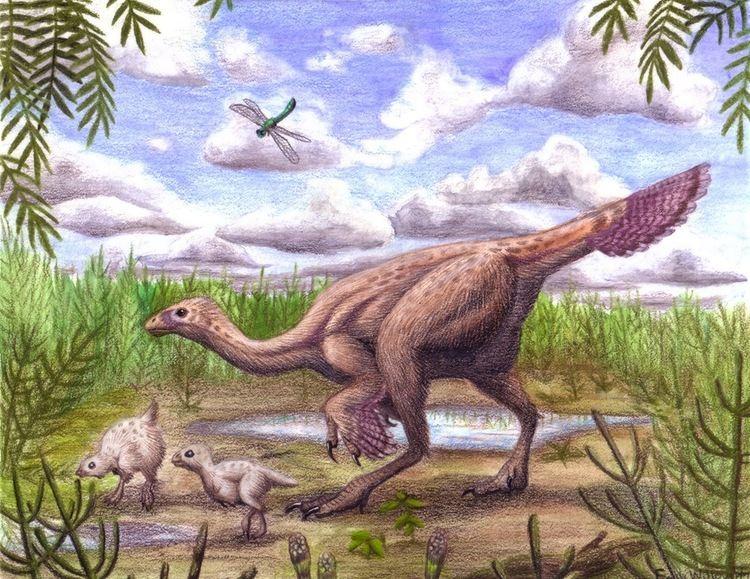 Caudipteryx Caudipteryx Emily Willoughby Art