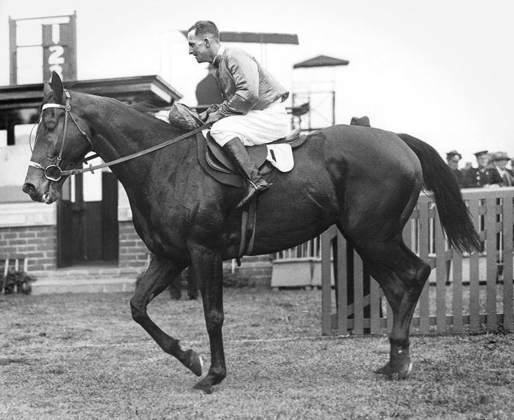 Caulfield Stakes