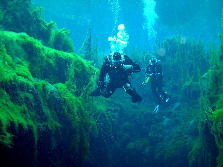 Cave Divers Association of Australia