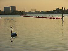 Caversham Lakes httpsuploadwikimediaorgwikipediacommonsthu