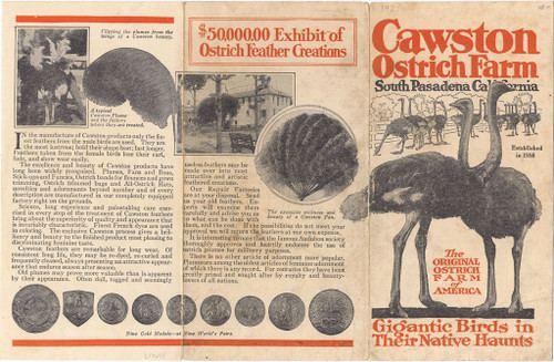 Cawston Ostrich Farm Calisphere Cawston Ostrich Farm Pamphlet 1921 Front