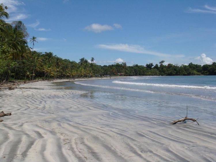 Cayo Agua Island panamaadvisoryinternationalgroupcomblogwpconte