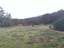 Cedar Crest, New Mexico httpsuploadwikimediaorgwikipediacommonsthu