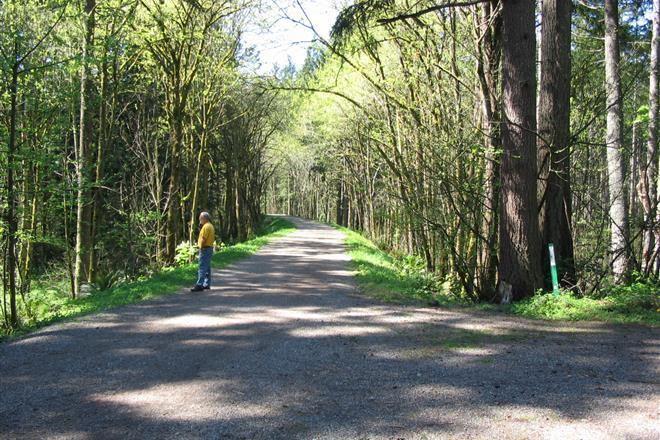 Cedar to Green River Trail httpswwwtraillinkcomphotosgreentocedarri
