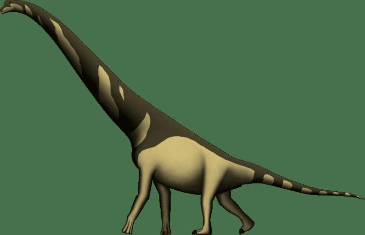 Cedarosaurus Cedarosaurus weiskopfae by SpinoInWonderland on DeviantArt