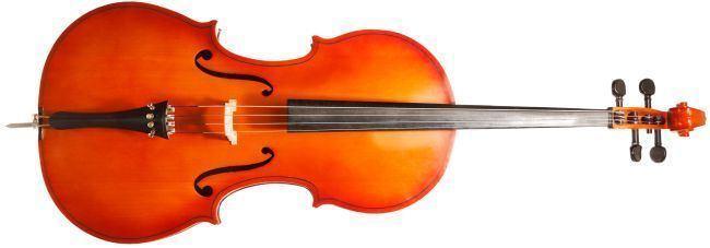 Cello Cello String Instrument Stradivariusorg
