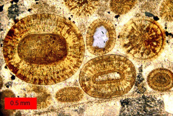 Cementation (geology)