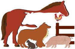 Center for Veterinary Medicine