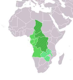Central Africa httpsuploadwikimediaorgwikipediacommonsthu