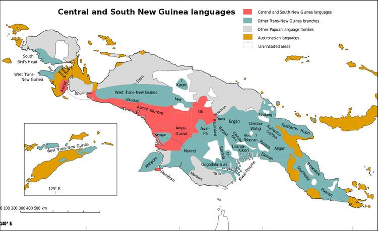 Central and South New Guinea languages