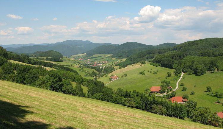 Central Black Forest