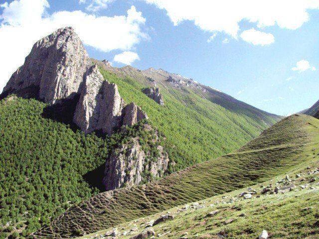 Central Karakoram National Park Endangered habitats Biodiversity of Karakoram National Park in
