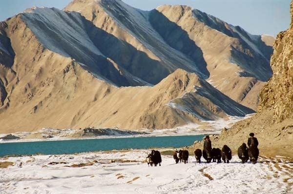 Central Karakoram National Park Central Karakoram National Park Unique Wild Life Pakistan