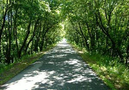 Central Lakes State Trail httpsmediacdntripadvisorcommediaphotos02