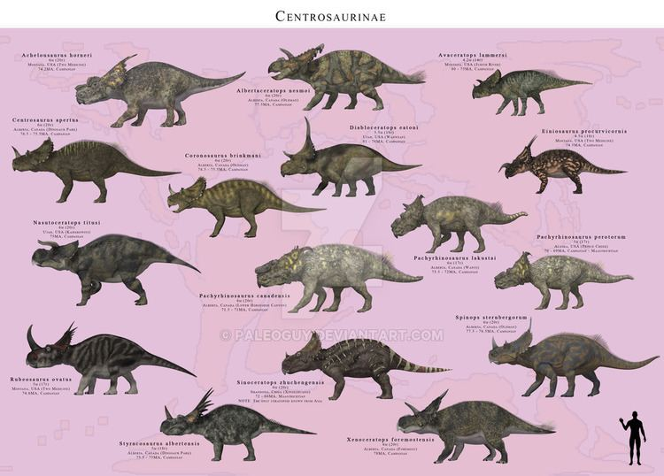 Centrosaurinae img05deviantartnet86f6i2015105bbcentrosau