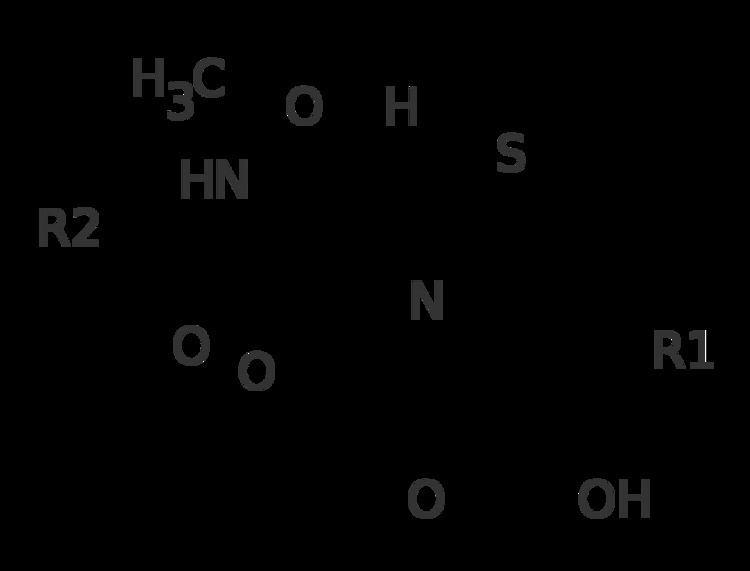 Cephamycin