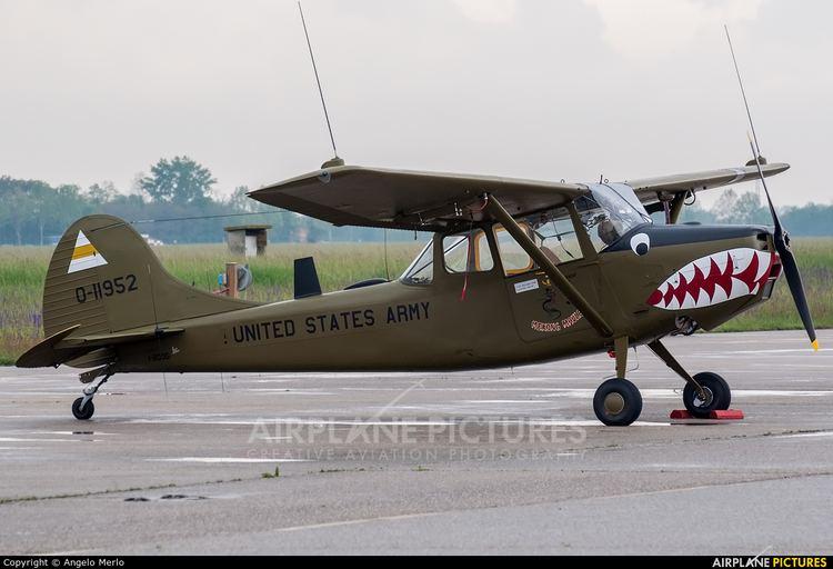 Cessna O-1 Bird Dog Cessna L19O1 Bird Dog Photos AirplanePicturesnet