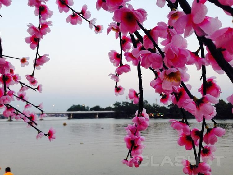 Chachoengsao Beautiful Landscapes of Chachoengsao