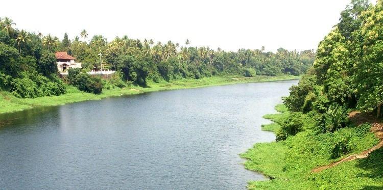 Chalakudy River pmgcacinwpcontentuploads201305river2e1369