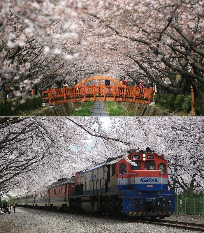 Changwon Festival of Changwon