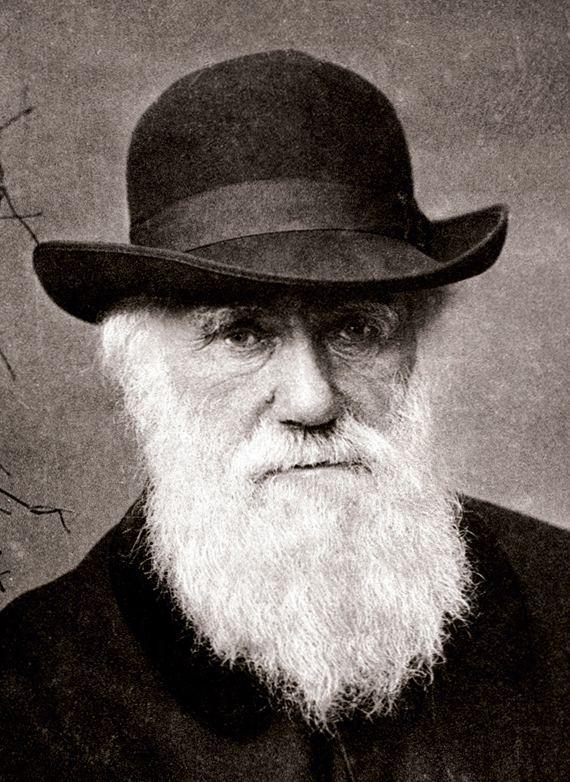 Charles Darwin Religious views of Charles Darwin Wikipedia the free