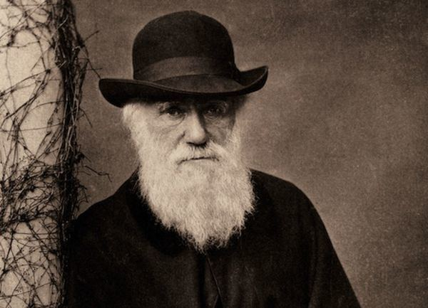 Charles Darwin What If Darwin Had Never Existed Popular Science