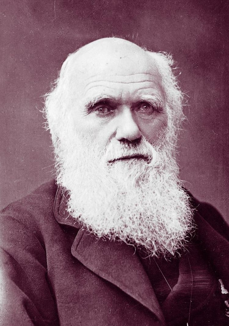 Charles Darwin microbiology from A to Z Micropia