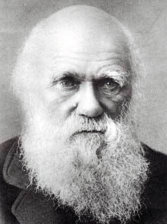 Charles Darwin Charles Darwin39s Autobiography Addendum