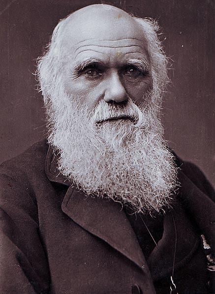 Charles Darwin Portraits of Charles Darwin Wikipedia the free encyclopedia