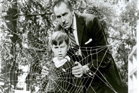 Charles Herbert Charles Herbert Former Kid Actor Scared By 39The Fly