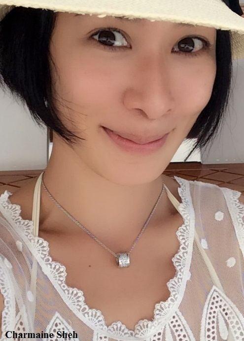 Charmaine Sheh Charmaine Sheh Movies Actress Hong Kong Filmography