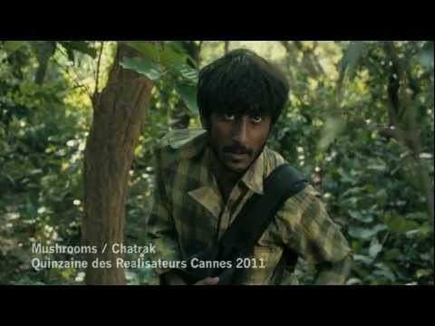 Chatrak Mushrooms Chatrak 2011 YouTube