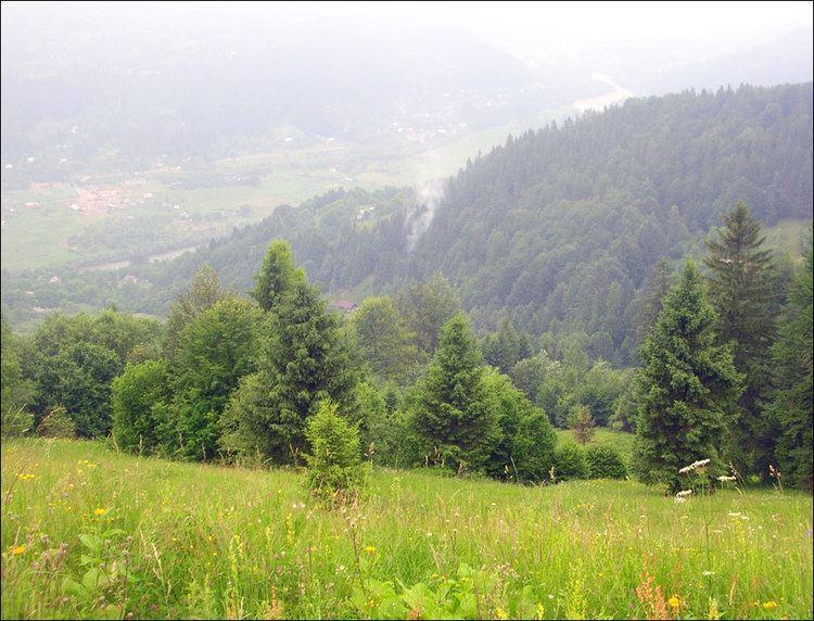 Chernivtsi Beautiful Landscapes of Chernivtsi