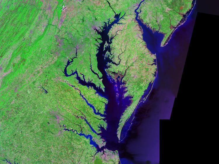 Chesapeake Bay httpsuploadwikimediaorgwikipediacommonsee