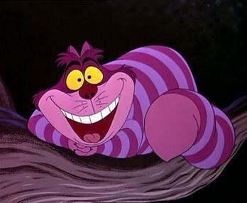 Cheshire Cat httpsuploadwikimediaorgwikipediaen88eDis