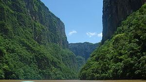 Chiapas Depression dry forests httpsuploadwikimediaorgwikipediacommonsthu