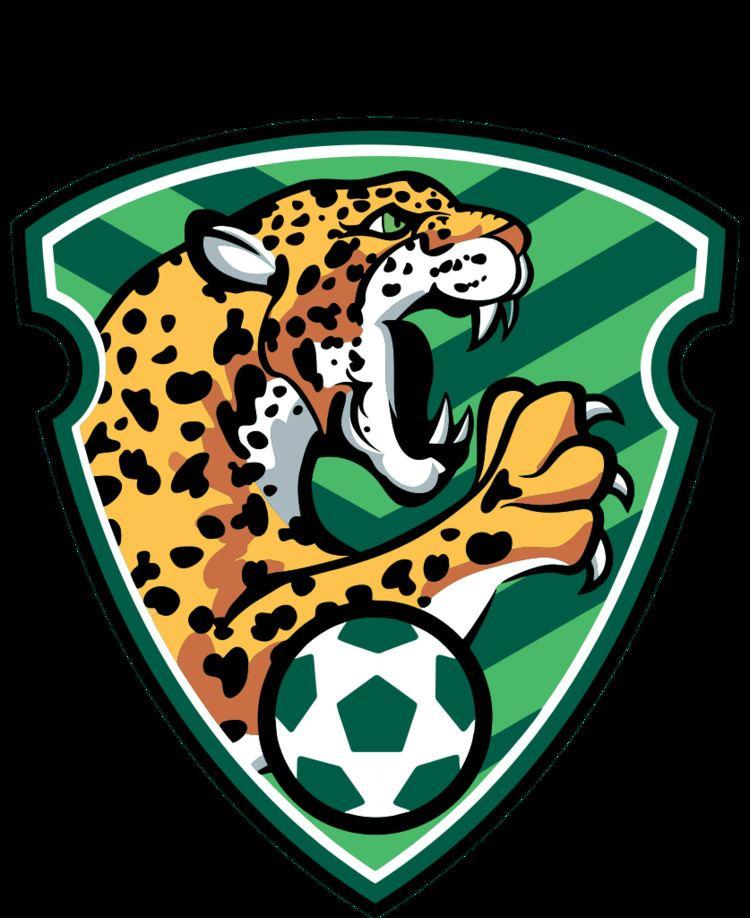 Chiapas F.C. httpsuploadwikimediaorgwikipediaenthumb3
