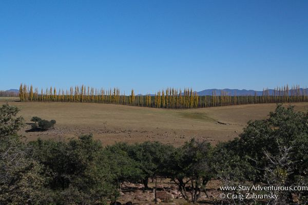 Chihuahua City Beautiful Landscapes of Chihuahua City
