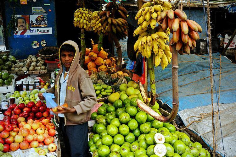 http://cdn.c.photoshelter.com/img-get2/I0000fmfdv7bnacE/fit=1000x750/g=G0000SQLbGd8J6pU/srilanka-nuwara-eliya-boy-selling-fruits.jpg