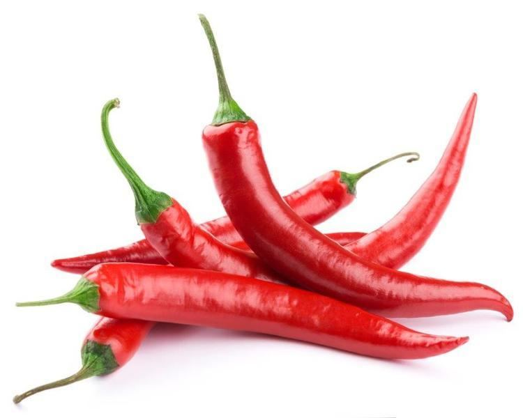 Chili pepper https3c1703fe8dsiteinternapcdnnetnewmangfx