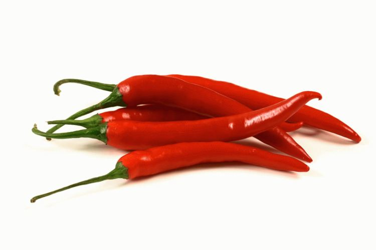 Chili pepper How Do Chili Peppers Make Your Mouth Feel Like It39s On Fire A
