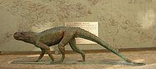 Chirotherium httpsuploadwikimediaorgwikipediacommonsthu