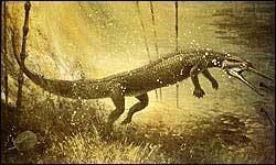 Choristodera Palaeos Vertebrates Choristodera Neochoristodera