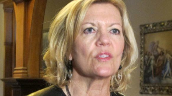 Christine Elliott Tory MPP asks auditor general to probe community care