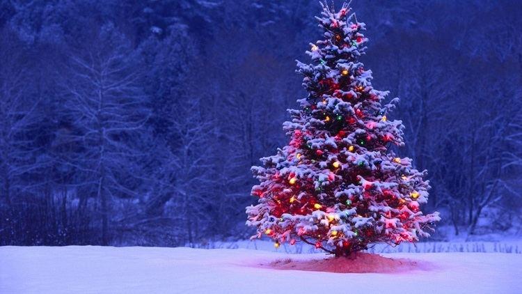 Christmas Do You Know ALL The Lyrics To The 12 Days of Christmas