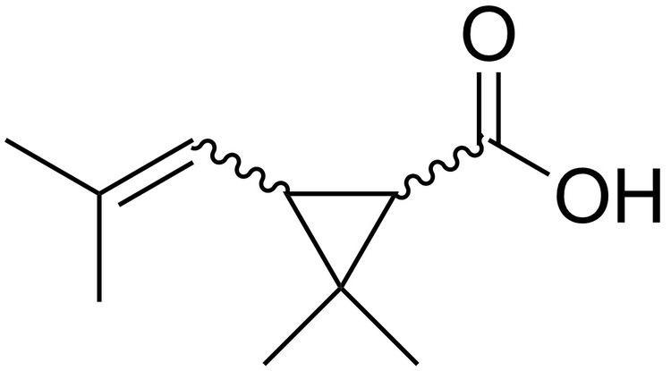Chrysanthemic acid FileChrysanthemic acidpng Wikimedia Commons