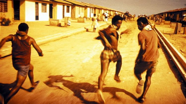 City of God (2002 film) Hello Everyone Also Is City of God Real University of Calgary
