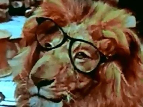 Clarence, the Cross-Eyed Lion Clarence The CrossEyed Lion Movie Trailer YouTube