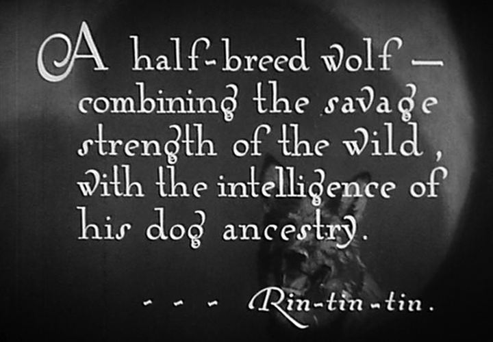 Clash of the Wolves movie scenes USA 1925 Directed by Noel Mason Smith Cast Rin Tin Tin Lobo Nanette Lobo s mate June Marlowe May Barstowe Charles Farrell Dave Weston